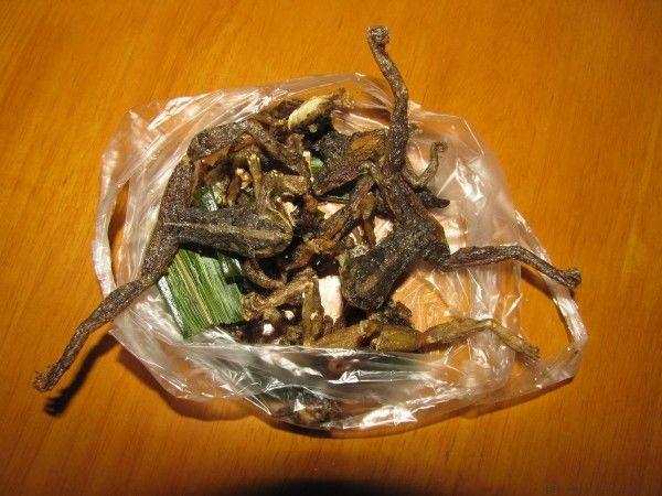жареные насекомые в таиланде жареные лягушки