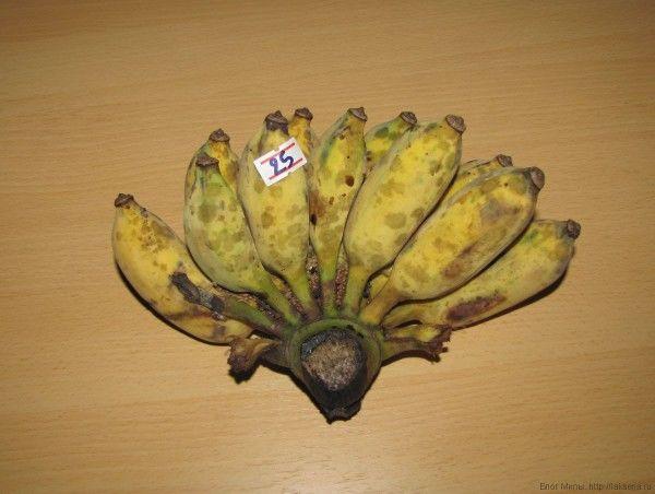 тайские бананы овощные бананы