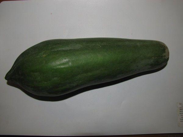 Зеленая папайя