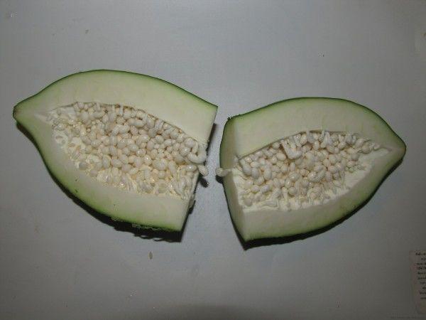 Зеленая папайя внутри