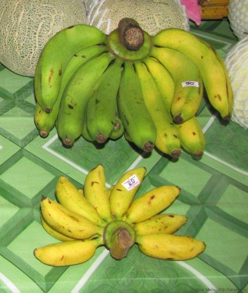 Маленькие полукрулые яйцевидные бананы Kluay Khai