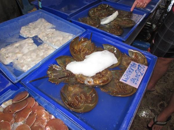 блюда из рыбы и морепродуктов в таиланде краб лошадиная подкова, мечехвост, pimp sea