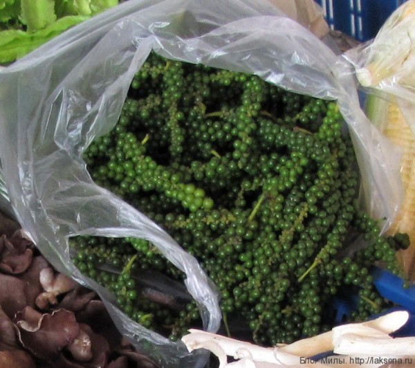 Приправы и овощи тайской кухни (фото) зеленый черный перец