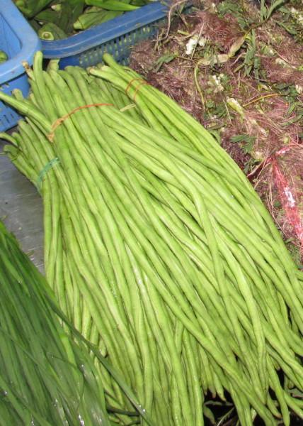Длинная китайская фасоль (змеиные, спаржевые ярдовые бобы) Туа Фак Яо