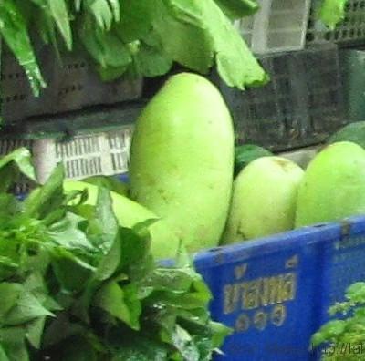 овощи в таиланде зимняя дыня Приправы и овощи тайской кухни (фото)