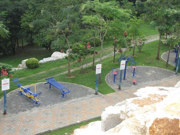 Тренажеры в парке