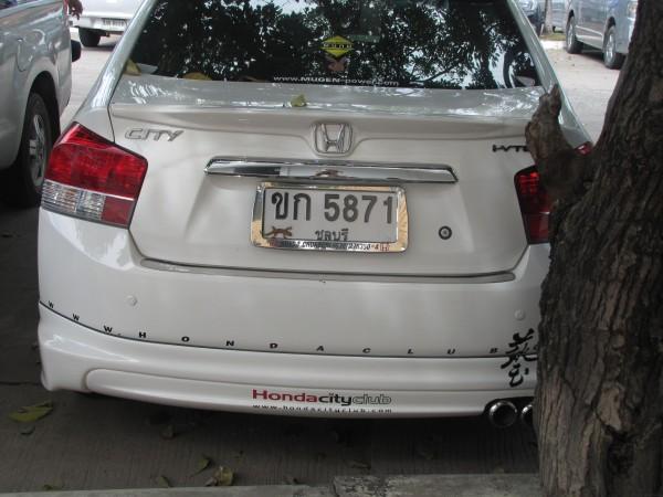 номера машин в Таиланде с ящерицей