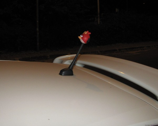антенна с Angry bird