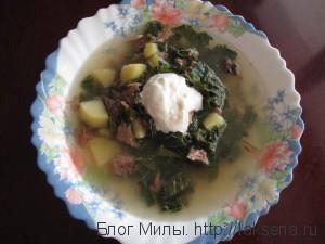 летний суп с крапивой рецепт щи с крапивой