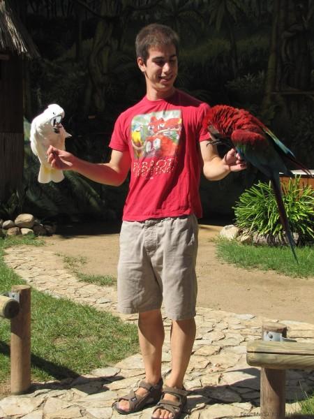 шоу попугаев аквапарк Маринеленд Каталония