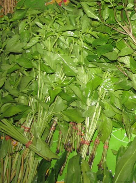 тайские травы лимонный базилик
