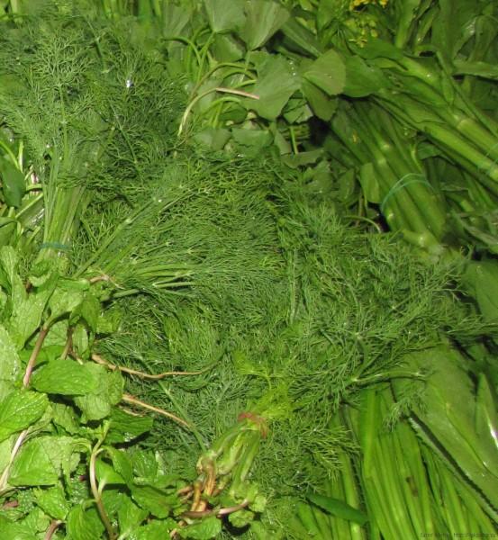 тайские травы укроп
