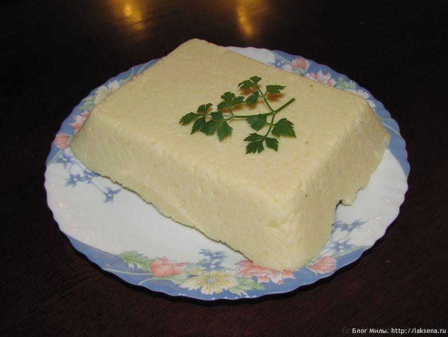 козий сыр в домашних условиях из творога