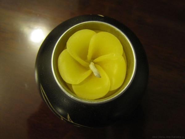 плюмерия в таиланде свечи с плюмерией