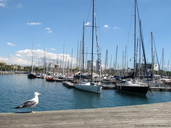 набережная барселоны порт барселоны яхты
