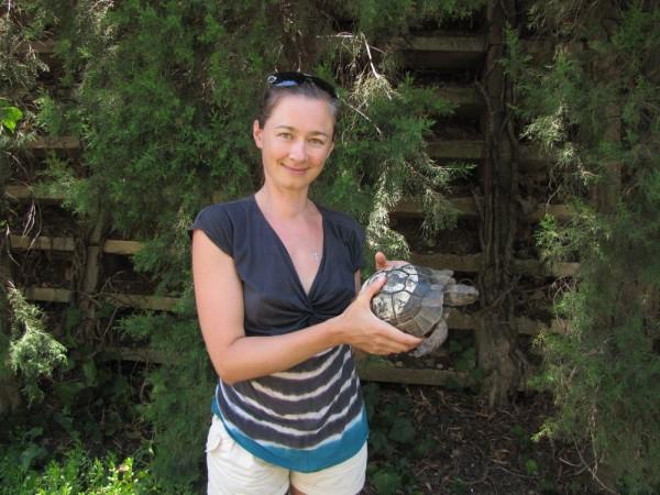 Grand Yazici Mares 5* черепаха