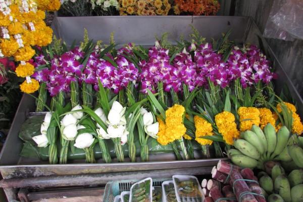 Лотос орехоносный, Nelumbo nucifera, Asiatic lotus орхидеи бархатцы