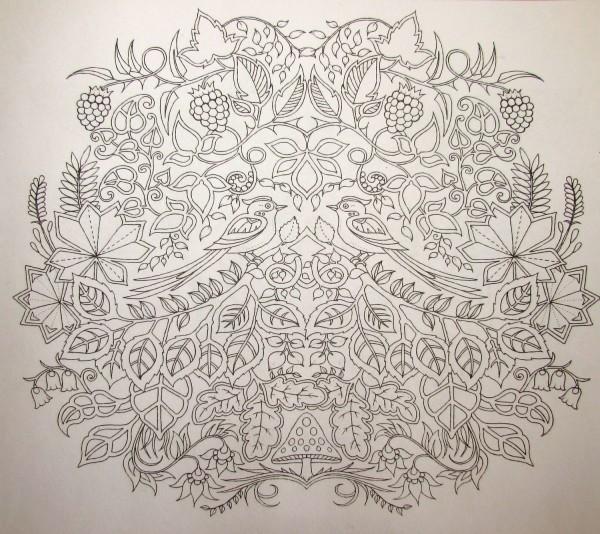 """лучшая раскраска для взрослых """"Заколдованный лес"""" (Enchanted forest) от художницы Джоанна Басфорд (Johanna Basford)"""