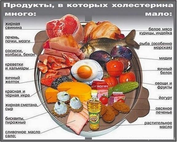 Значение печени для организма 3 класс