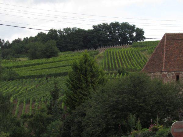 риквир riquewihr La Tour des Voleurs, башня воров