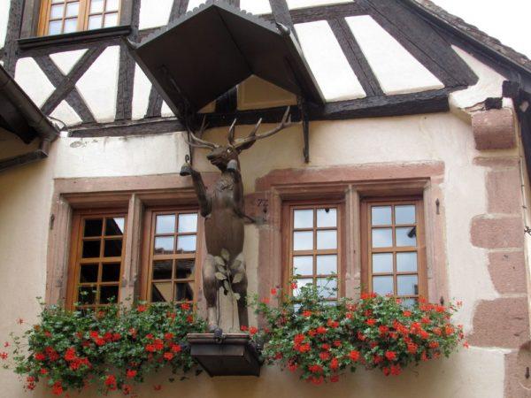 дом с оленем риквир riquewihr