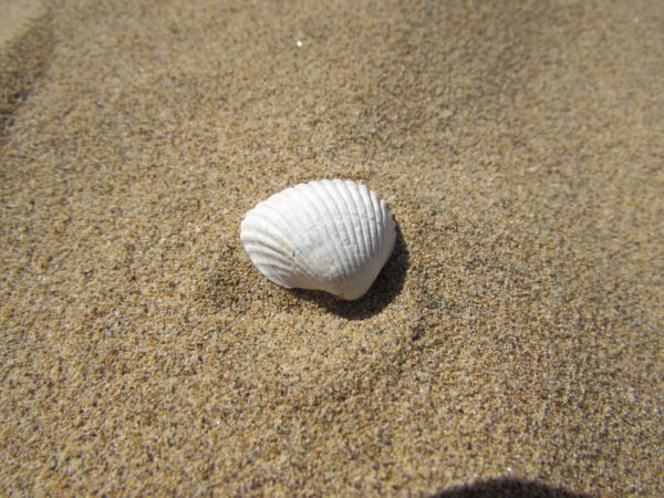 Пляж Лидо ди Езоло золотой песок
