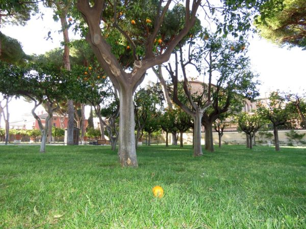 холм авентин Апельсиновый сад на Авентине (Parko Savello)