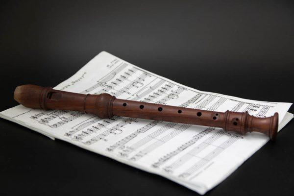 Загадки про музыкальные инструменты флейта блокфлейта
