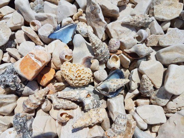 Пляжи Трогира