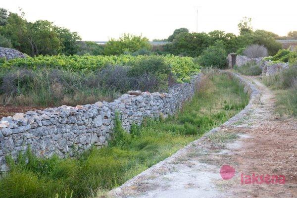 Врбоска Хорватия остров Хвар