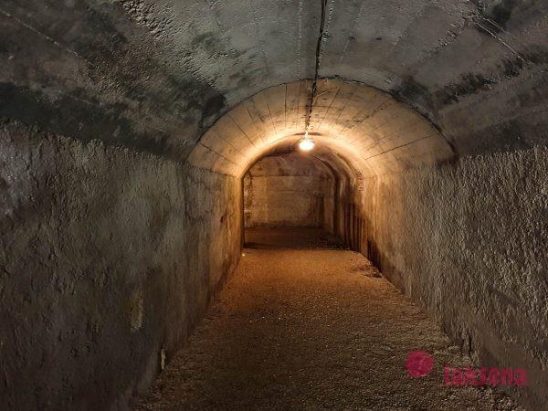 тоннель под пулой