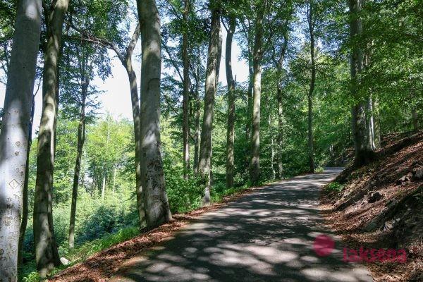 карловарский лес Смотровая площадка Три креста кавловы вары