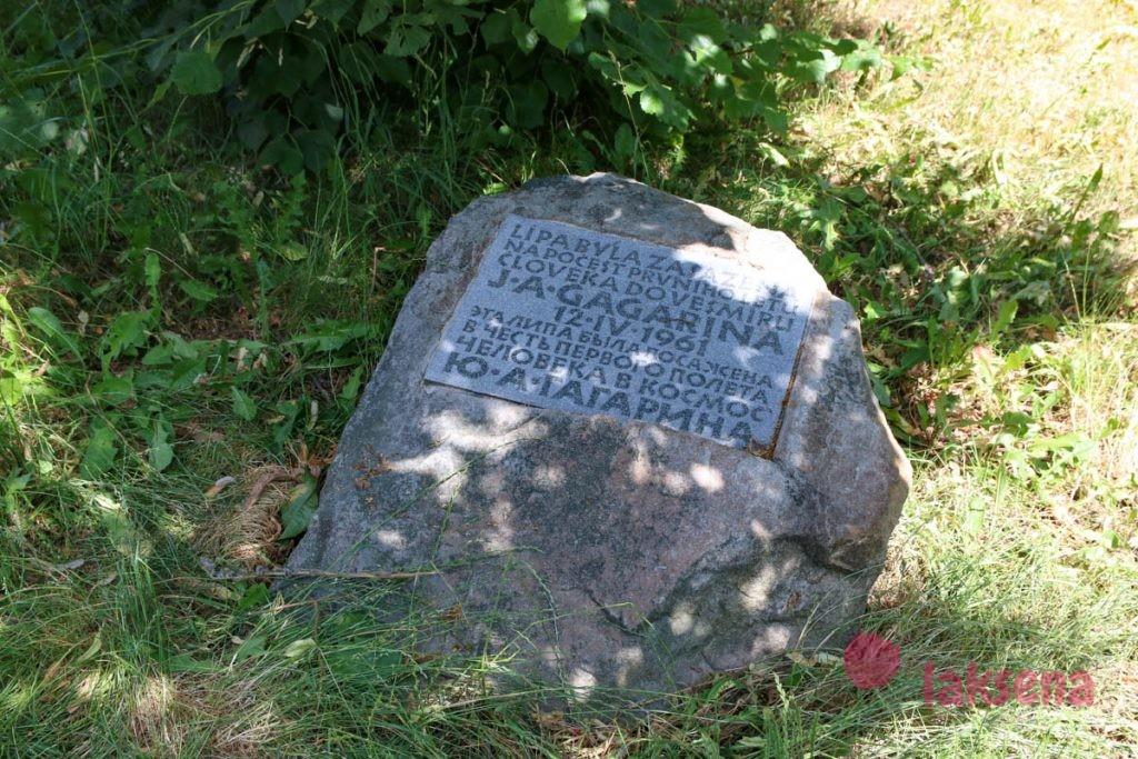 Липа Гагарина ричмонд японский сад карловы вары
